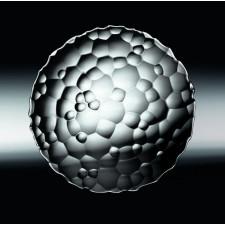 """Тарелка 23 см """"Sphere"""" NACHTMANN"""