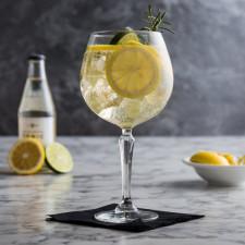 Бокал для коктейля Gin&Tonic 580 мл SPKSY Libbey