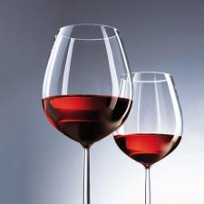 Бокал для вина 613мл Schott DIVA